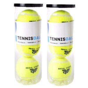 6x Tennisballen in koker -